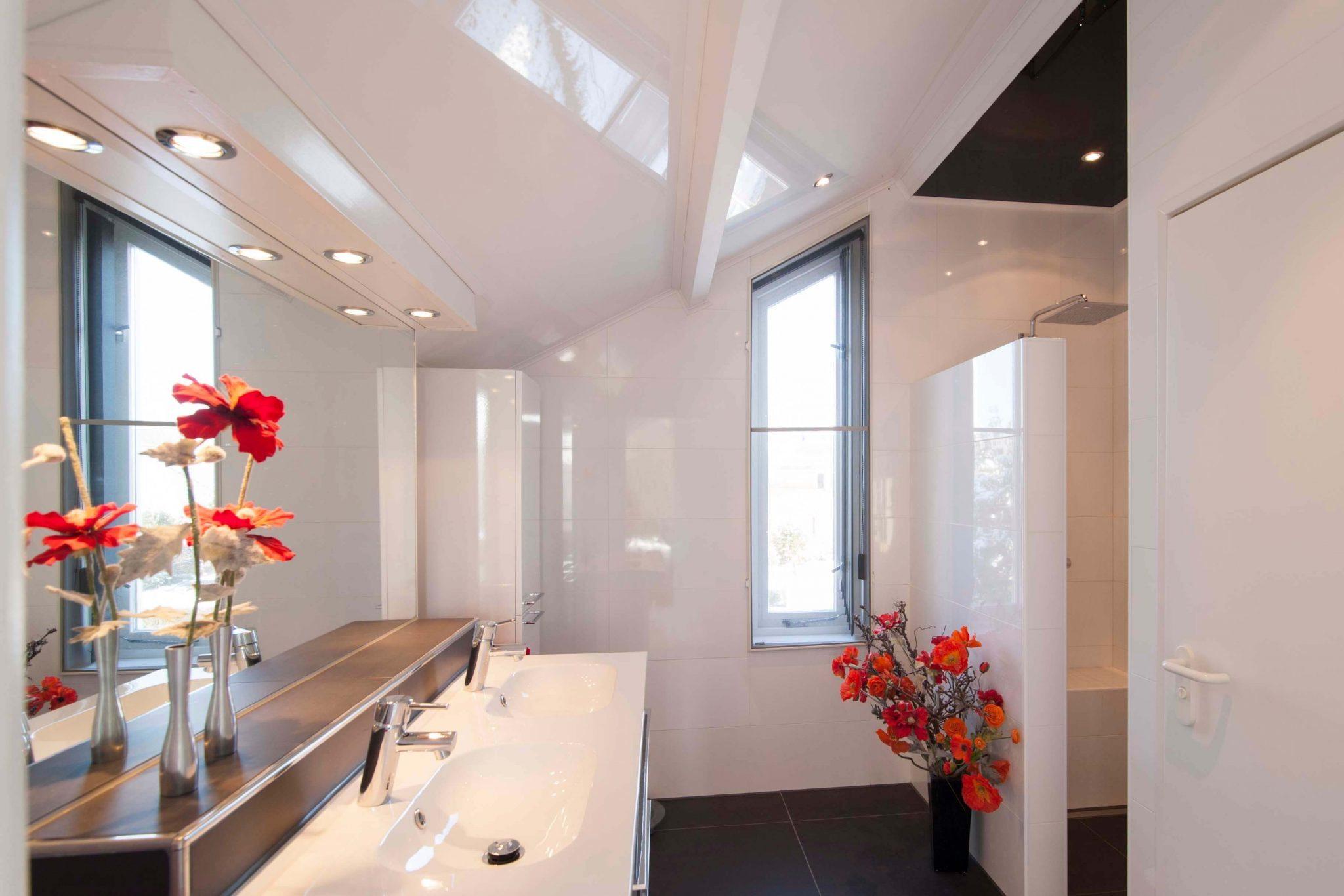 Naadloos Plafond Badkamer : Spanplafonds badmeesters